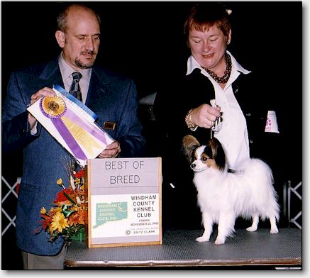 Tip winning his 1st BOB, Nov 2002